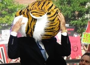 corso-tigersa