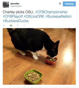 Charley's pick!